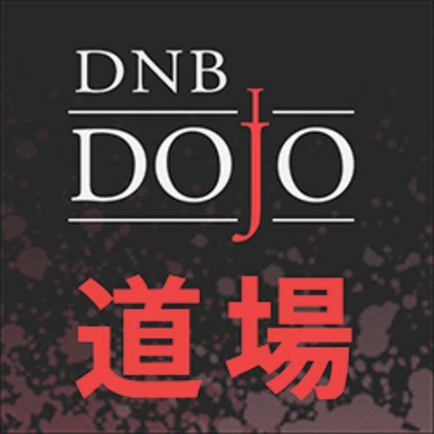 DNB Dojo Frodo Q&A